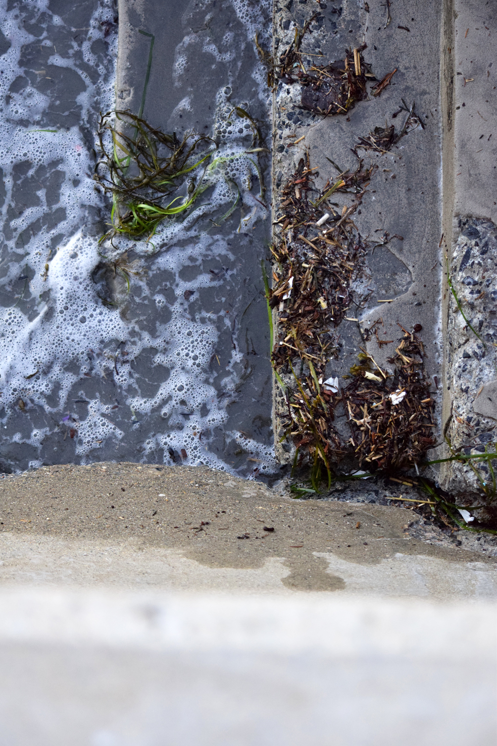 Swampscott beach steps