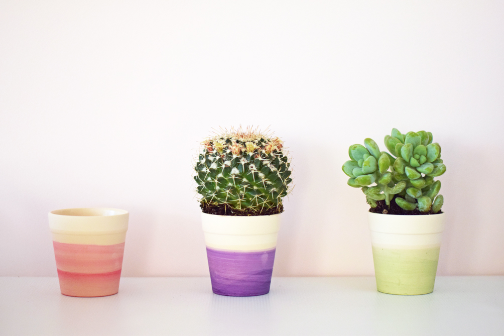 decorate with dip dye cactus pots - one brass fox