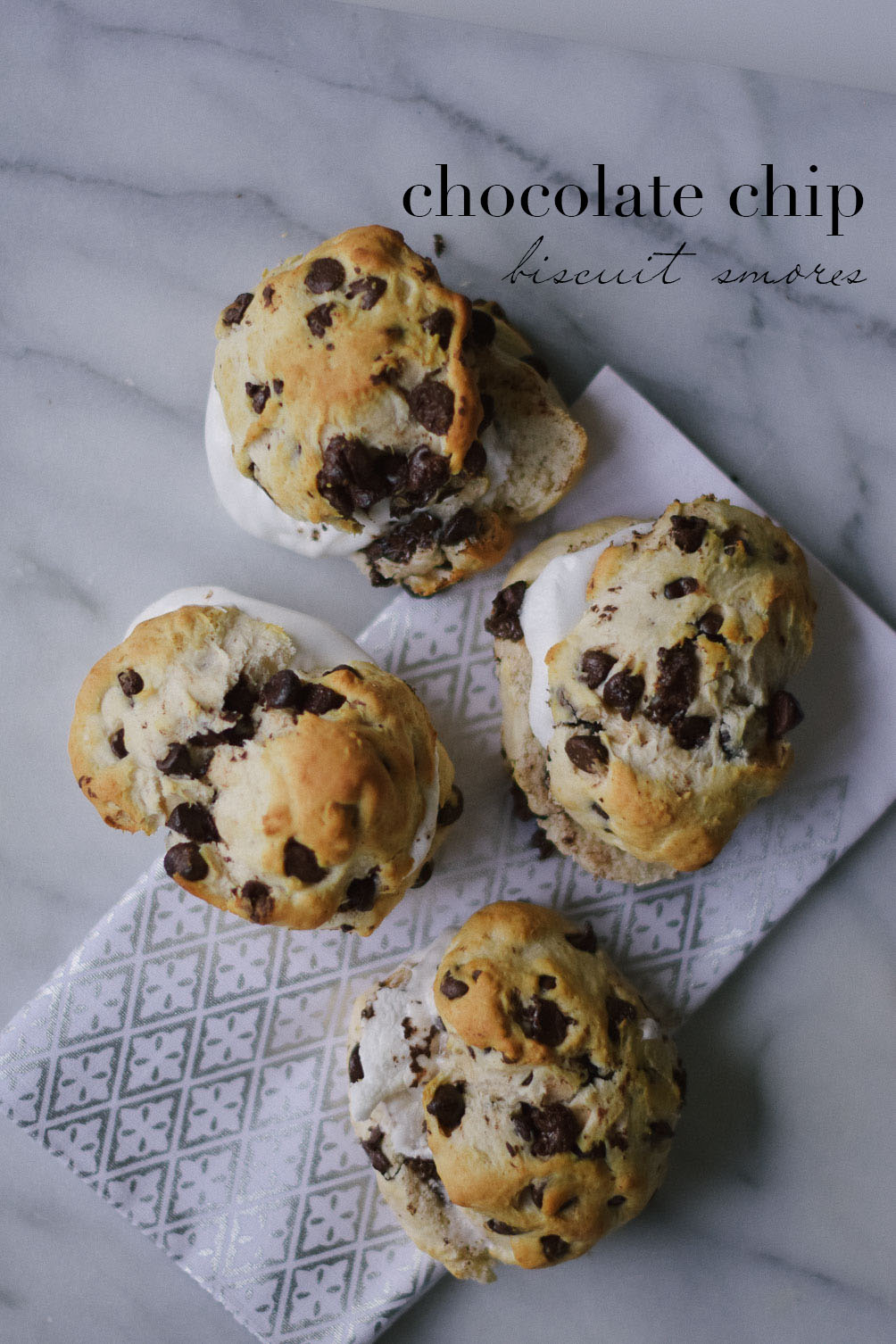 chocolate-chip-biscuit-smores-11-copy